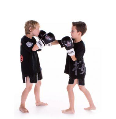 Kickboksen Zoetermeer Kids